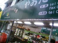 Yaotake_2