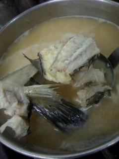 ミシマオコゼのお味噌汁
