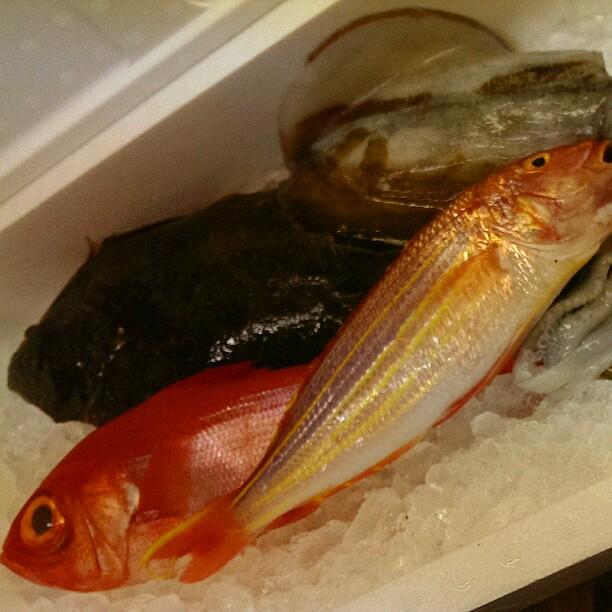 金目鯛に寒ヒラメ‼