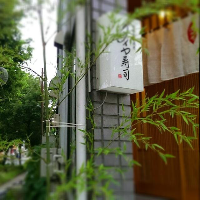 笹の葉、さ~らさら~