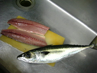 久里浜の鯖